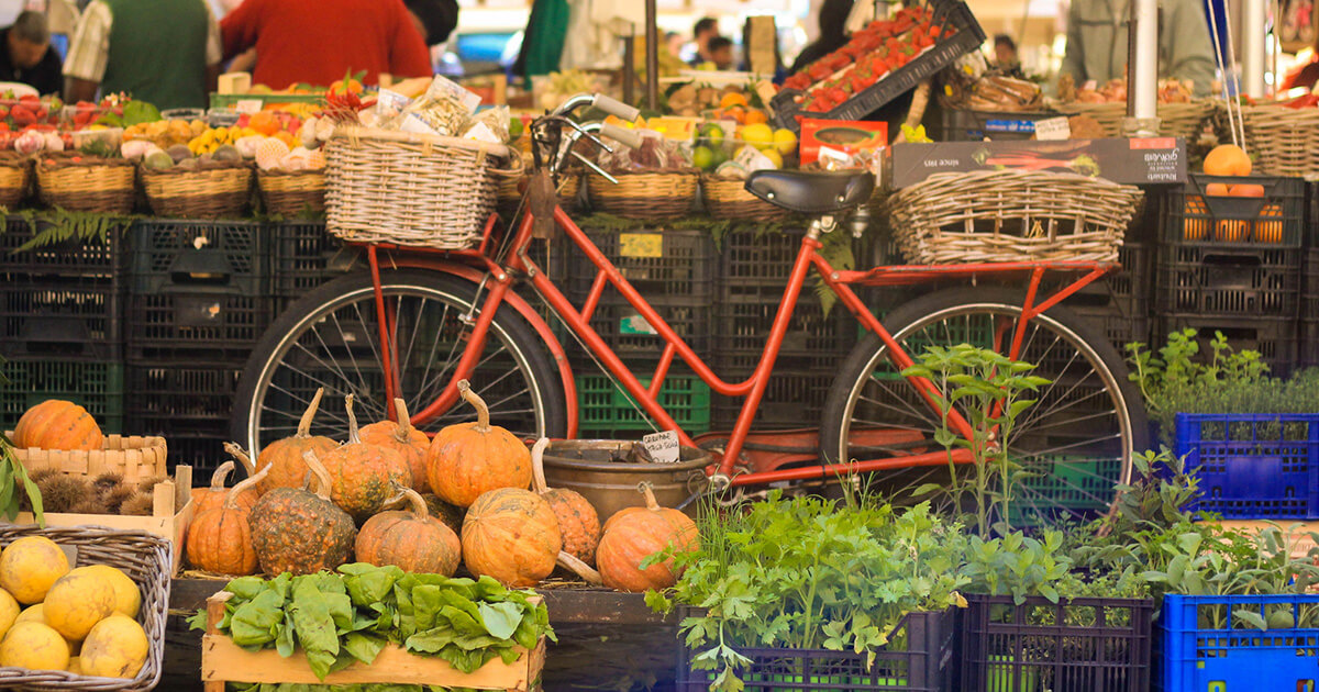 Food Lovers' tours of Lucca