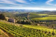Chianti Region Private Day Tour