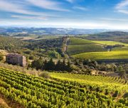 Chianti Region Private Day Tour