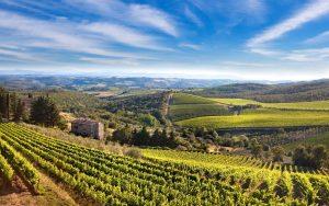 Tuscany Tour Bellaitaliatour