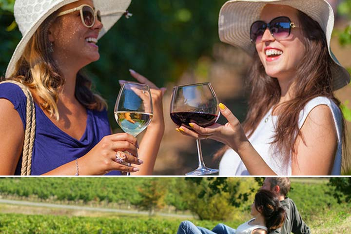 chiantiand supertuscan wine tour from florence