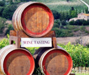 Super Tuscan Wine Tour from Florence