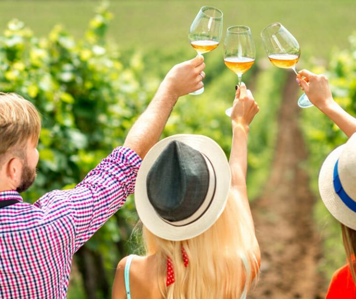 Wine degustation in Tuscany