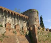 Wine Tour Montecarlo Tuscany