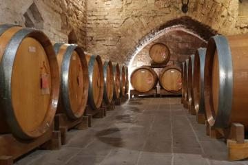 Montalcino tour from Florence