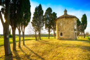 Bolgheri Tuscany Tour