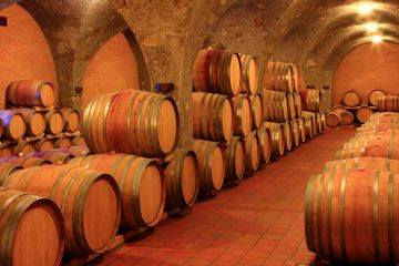 Montalcino Winery Cellar in Tuscany