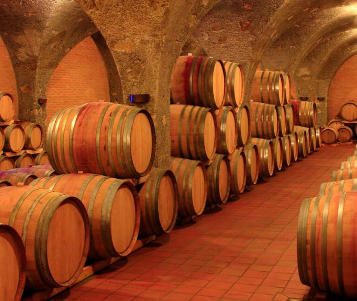 Montalcino Winery Cellar in Tuscany
