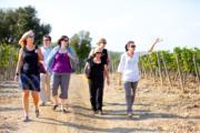 walking in the tuscan vineyards