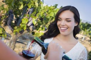 Half Wine day tour from Versilia