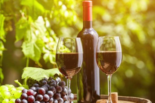 chianti and supertuscan wine tour from lucca by bellaitaliatour