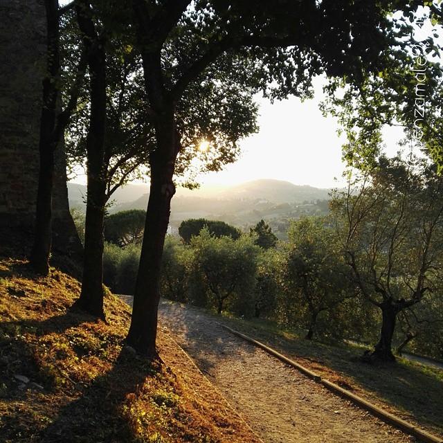 San Gimignano Rocca di Montestaffoli
